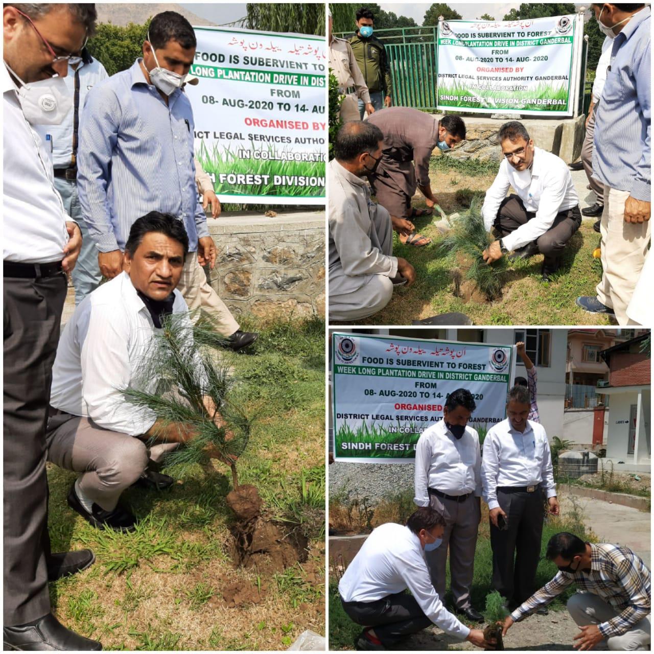 जिला विधिक सेवा प्राधिकरण गांदरबल ने गांदरबल में वृक्षारोपण अभियान शुरू किया
