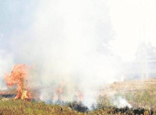 पंजाब में जली पराली, असर राजधानी में दिखा