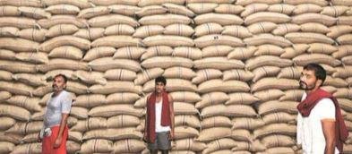 उत्तर प्रदेश के गन्ना किसानों ने क्यो कहा सरकार का फैसला ऊंट के मुंह में जीरा है