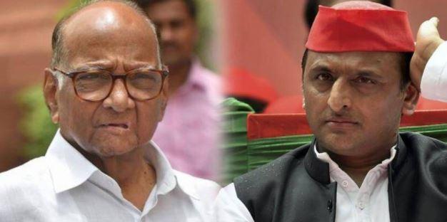 शरद पवार ने मिलाया समाजवादी पार्टी से हाथ-मिलकर लड़ेंगें चुनाव