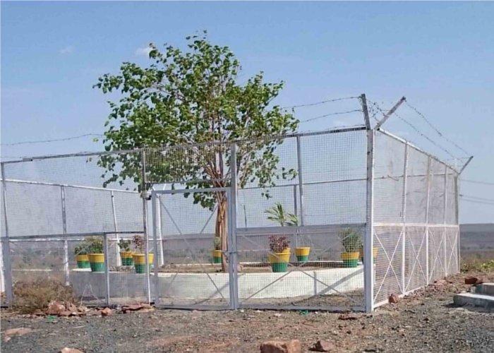 भारत का VIP पेड़, 24 घंटे पुलिस करती है सुरक्षा