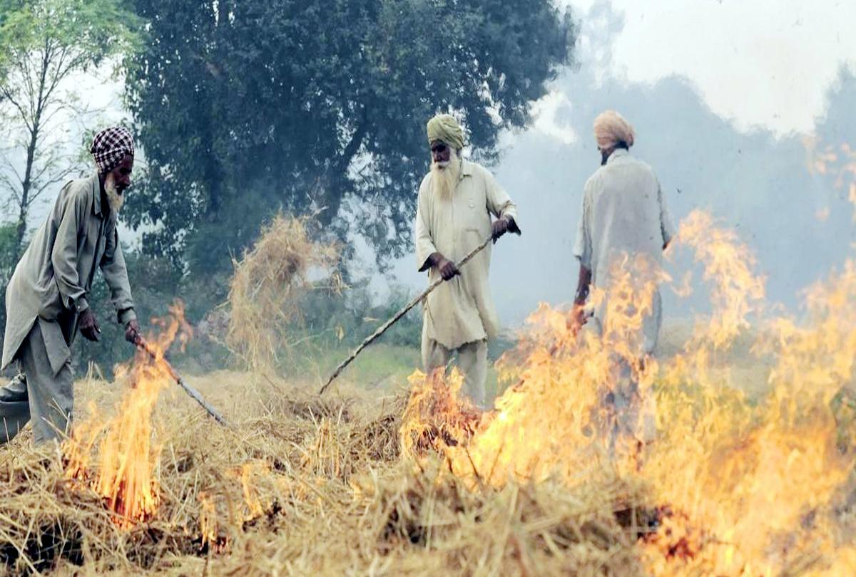 खट्टर सरकार का बड़ा फैसला, पराली जलाने की सूचना दें और पाएं 1000 रुपये का इनाम