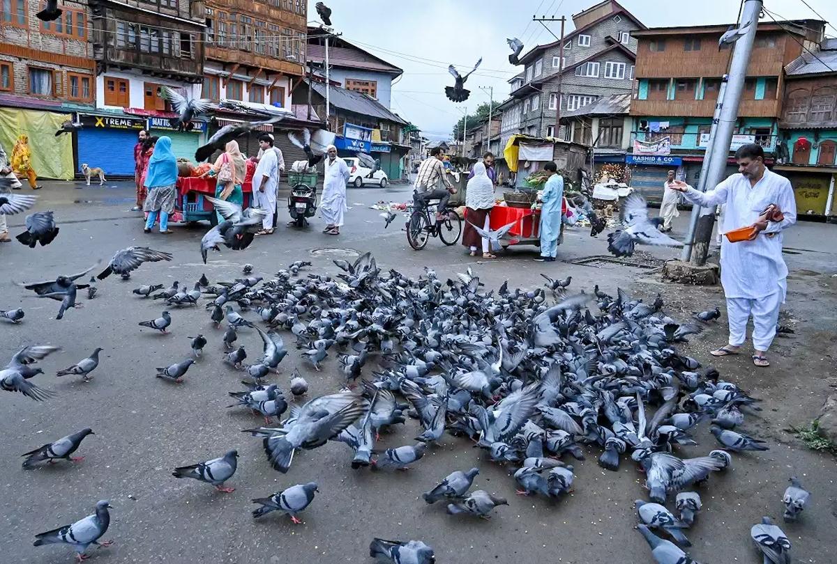 राष्ट्रपति शासन हटने के बाद कुछ ऐसा है जम्मू-कश्मीर का माहौल, आरके माथुर लद्दाख के पहले उपराज्यपाल, यहां बढ़ेंगे कारोबार के मौके